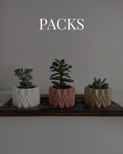 Packs_Mesa de trabajo 3 copia